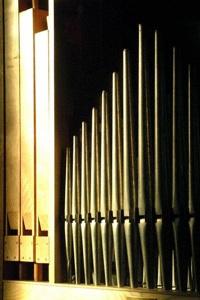 El organo de tubos